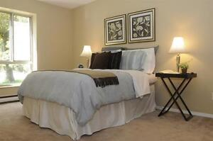 Park-Like Setting -East Windsor- Convenient-Updated! Windsor Region Ontario image 4