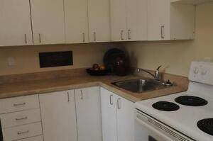 2 BR - Live by the Lake! Upgraded Suites - Close to Transit