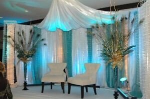Backdrops $200 all styles and colours with Led lights Edmonton Edmonton Area image 1