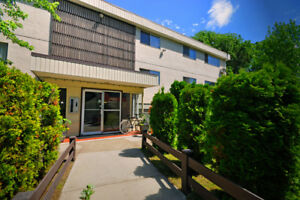 Edgewater Terrace Apartments - 1 Bedroom Apartment for Rent...