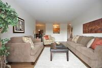 Large, Updated 2 BD in Clayton Park! Bright + Close to Transit!