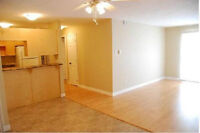 **1 Month free or 6 month lease** $$ Washer & Dryer incl. $$
