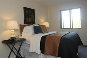 Live the Downtown Life in a Spacious-Bright Suite! London Ontario image 4