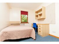 (STUDENT) room available May - July