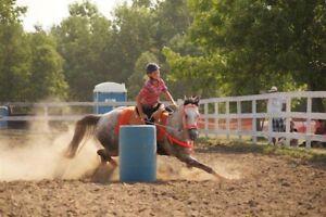 Registered QH barrel mare for sale