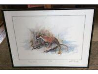 Four Ben Maile wildlife prints