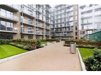 Massive Studio apartment available in Seven Sea Gardens E3 3GW**PAST-DSS WELCOME**