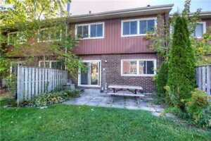 Renovated one bedroom basement for rent in Scarborough