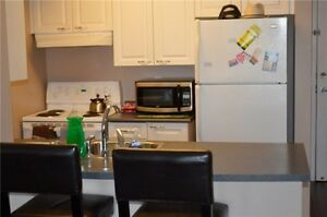 1 bed and 1 bath condo apart cls to Sheridan College Brampton