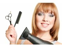 hairstylist/hairdresser
