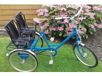 Wanted trikidoo or similar adult tricycle trike