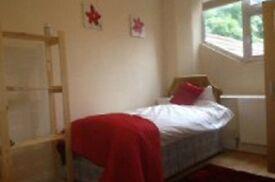 Stunning single room in Stratford