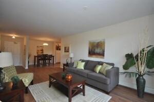 Bright Spacious 2BR on Parkland Drive-Dog Friendly