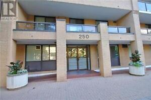 1 Minute Walk To Ryerson 2Br,1B,250 JARVIS ST, Great Downtown