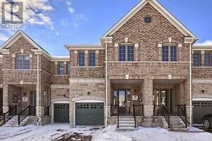 Brand New House for Rent in Bradford West Gwillimbury