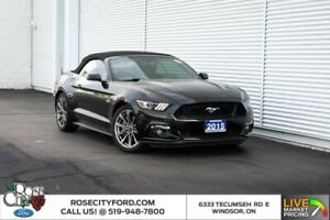 2015 Ford Mustang GT Premium / CONVERTIBLE / BACK UP CAM / HEATE