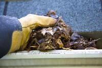 Cheap, professional gutter cleaning and moss removal $60 and up