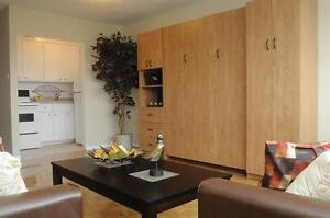 1 month free! Sandy Hill! Ultra Convenient- Bachelor suite!