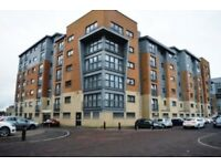 Professional to Share Lovely Southside Double Bedroom flat