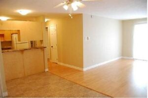 Nicest Apt for the Price! 381-3333 (Washer & Dryer included)