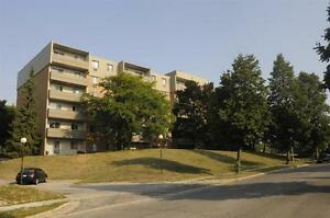 Quiet Residential Area! Minutes to Western -Transit-Downtown Fun London Ontario image 5