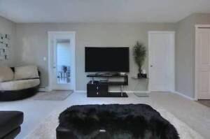 Brand New 2 Bed 1 Bath, Dogs Welcome