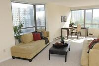 Renovated-Condo-Style Suites!
