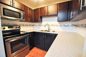 2 bedrooms for the price of 1! PLUS ONE MONTH FREE! Kitchener / Waterloo Kitchener Area image 3