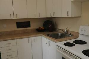 1 BR-Bright-Spacious-Roomy Kitchen-Walking Distance to the Lake!