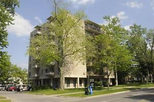 Live the Downtown Life in a Spacious-Bright Suite! London Ontario image 6