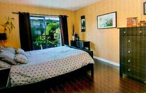 Furnished 1-Bedroom Downtown Condo just off Cambie Street (16TH