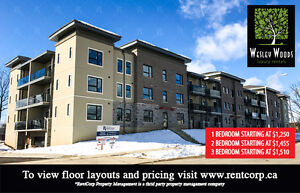 TWO BEDROOM UNITS FOR RENT   Luxury Apartment Rentals