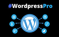 WordPress Website/Capture page Builder For Any Needs