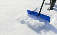 Snow Shoveling  Service for $40 on weekends