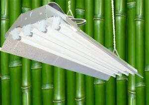 T5 HO Indoor Grow Light - 4 ft 4 Lamps DL844 Fluorescent Hydroponic Fixture Veg