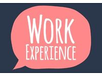 2 WEEKS WORK EXPERIENCE LEADING TO FULL TIME WORK? DO YOU WANT IT? APPLY NOW!