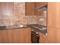 2 spare rooms in a four bedroom flat on Crwys Road, £255 per month