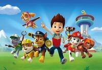 Paw Patrol Bounce Party