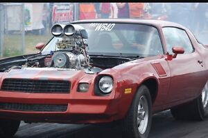 Looking for a solid 1978-1981 camaro