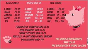 Pawz Above the Rest Dog Grooming Xmas opening available still London Ontario image 2