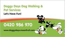 Doggy Days Pet Services Corinda Brisbane South West Preview