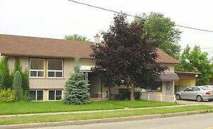 ideal for Waterloo and WLU students. Utilities included !!!!!!! Kitchener / Waterloo Kitchener Area image 1