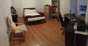 May 1 Summer Sublet - Downtown - McGill, Concordia, Crescent