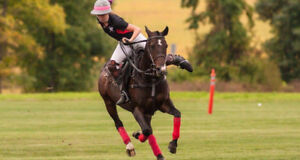COME AND PLAY POLO! YES! HERE IN OTTAWA!
