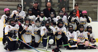 FREE Kids' Event in Fergus: Come Try Ringette