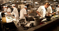 Kitchen Help/Line Cook Needed for a busy Indian Restaurant