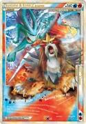 Suicune Entei Legend