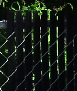 Wanted - Privacy inserts - Chain link gate - 5' Black