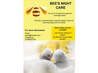 Female Night Carer Available