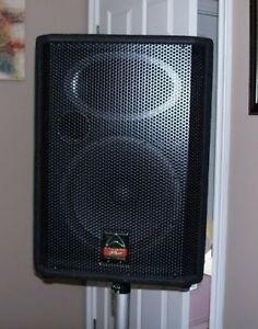 speakers good for music dj or pa